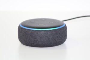 Assistenti Vocali Casa Alexa Echo