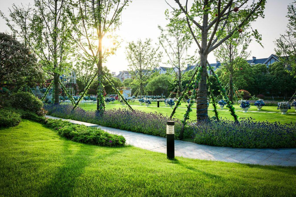sentieri per giardino